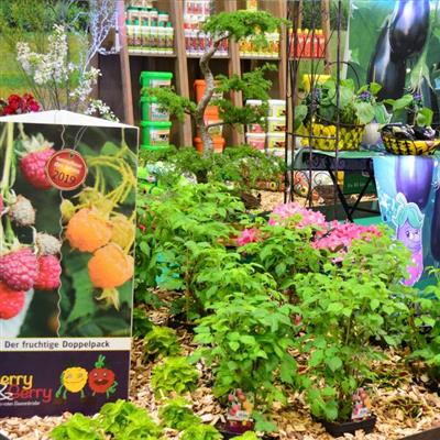Exhibition for Quality of Life and Leisure - Plants
