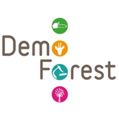 Demo Forest