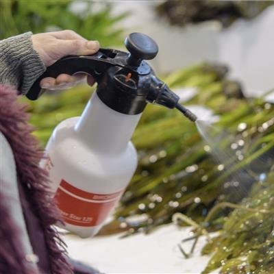International Trade Show for Fishing, Flyfishing and Aquaristic - Care of water plants